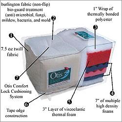 Otis Pulsar Futon Mattress