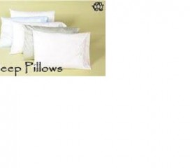 White Lotus Organic Wool Pillows